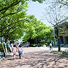 Center for Japanese Language and Student Exchange